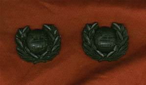 WW2 Pair of wartime plastic Royal Marines collar dogs