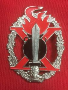 Replica WW2 Italian 10th DECIMA R.S.I. Pioneer Assault Badge