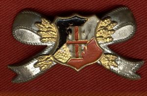 WW1 Imperial German Pin Back Badge