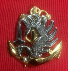 Replica Modern French Elite Marine Paratrooper Badge